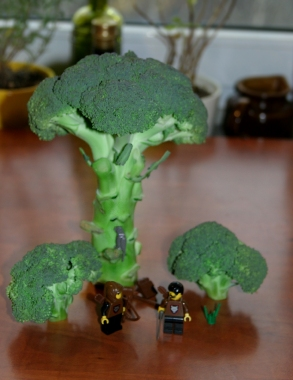 broccolego